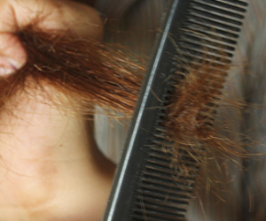 Tips for Picking a Great Hairbrush